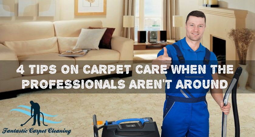 4 Tips on Carpet Care When the Professionals Aren't Around