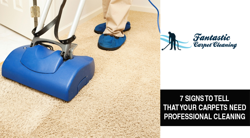 Carpet Cleaning Guide From The Experts Blog
