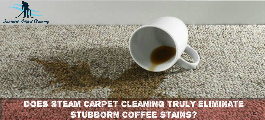 Carpet Steam Cleaning for Coffee Stains
