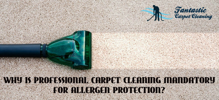 professional carpet cleaning mandatory for allergen protection